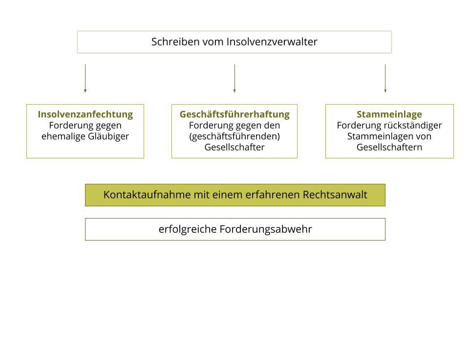 Rückforderung Insolvenzverwalter Insolvenzanfechtung Geschäftsführerhaftung
