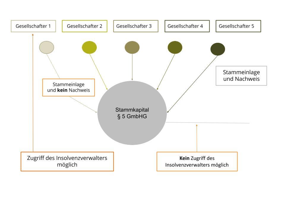 Stammeinlage, Stammkapital § 5 GmbHG kein Nachweis